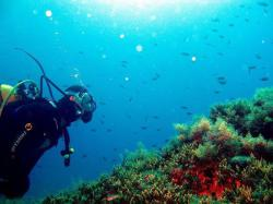 13Diving-Excursion-On-Crete-Greece-Holiday13