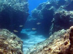 31Diving-Excursion-On-Crete-Greece-Holiday31