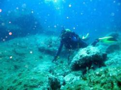 63Diving-Excursion-On-Crete-Greece-Holiday63