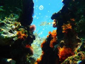 Snorkling on Crete Greece