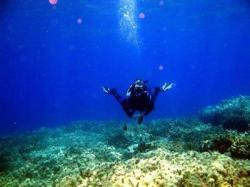 12Diving-Excursion-On-Crete-Greece-Holiday12
