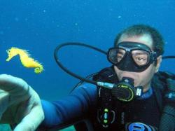 27Diving-Excursion-On-Crete-Greece-Holiday27