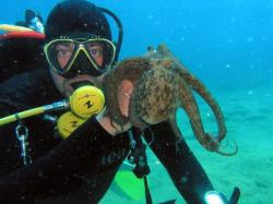 35Diving-Excursion-On-Crete-Greece-Holiday35