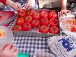 60Coocking-Course-Crete-Holiday60