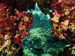 74Diving-Excursion-On-Crete-Greece-Holiday74