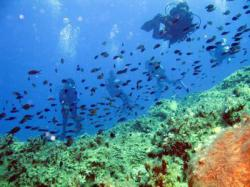 86Diving-Excursion-On-Crete-Greece-Holiday86