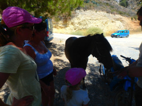 Cooking courses and workshops excursions on Crete (10)
