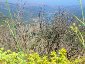 Walking and Hiking on Crete Greece (60)